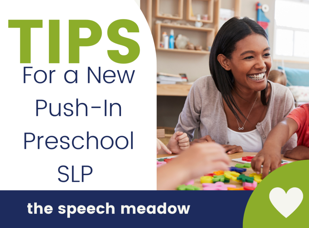 Title of the Blog: Tips for a New Push-In SLP